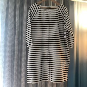 NWT A-line cotton dress form Gap.